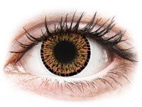 alensa.ie - Contact lenses - Brown Elgance Contact Lenses - ColourVue