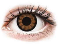 alensa.ie - Contact lenses - Sexy Brown Contact Lenses - Power - ColourVue BigEyes