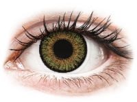 alensa.ie - Contact lenses - Pure Hazel contact lenses - FreshLook One Day Color - Power